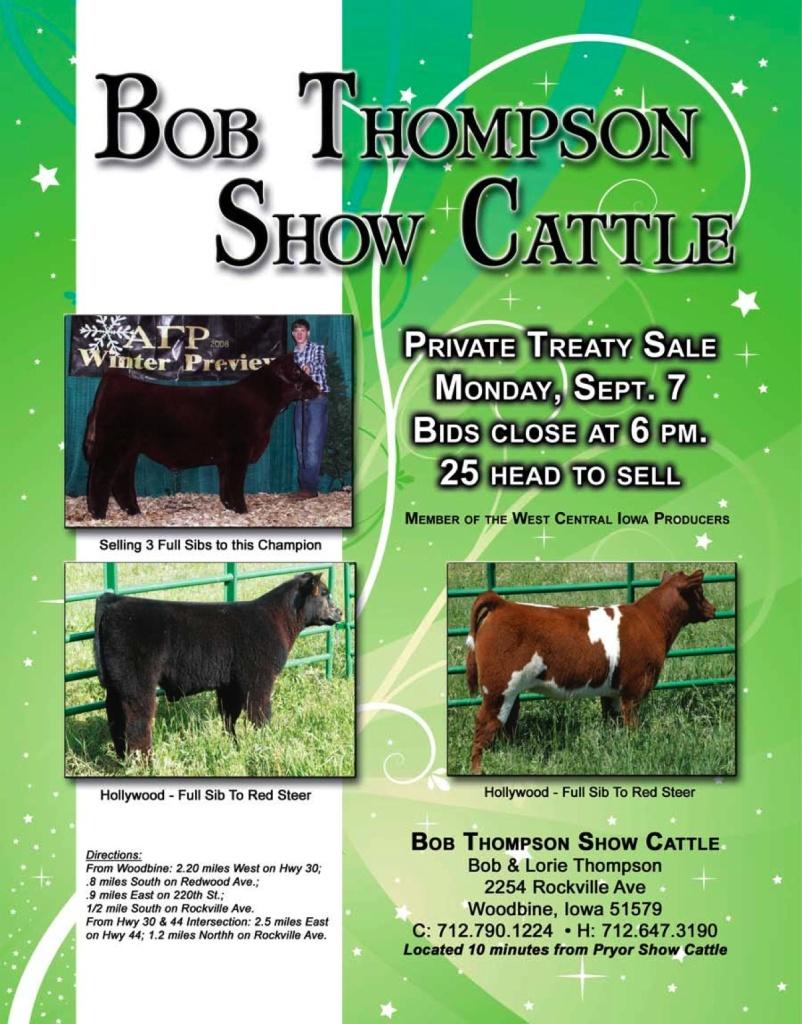 2009 Calf Sale